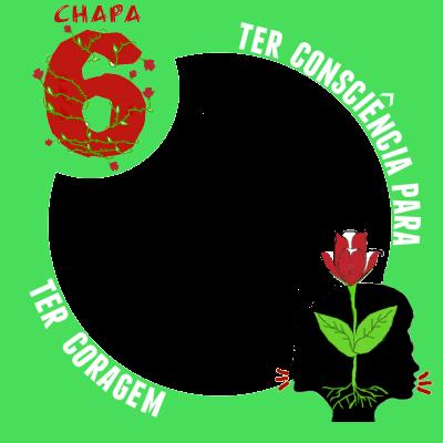 Chapa 6