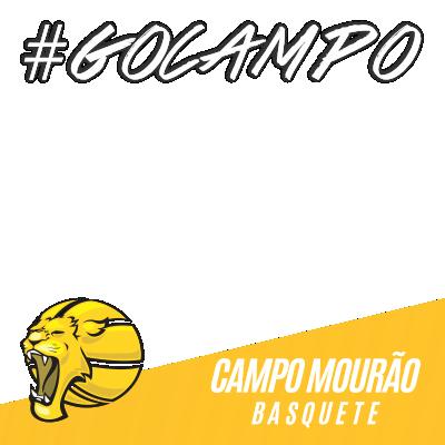 CAMPO MOURAO BASQUETE