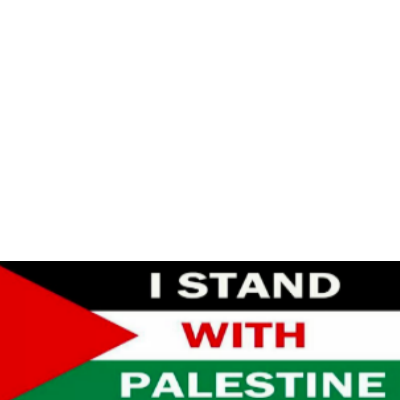Standing up for Palestine