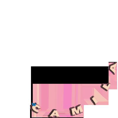 CAMILA the album