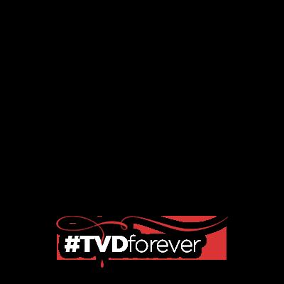 #TVDForever (mais claro)