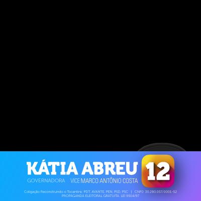 Kátia Abreu #12