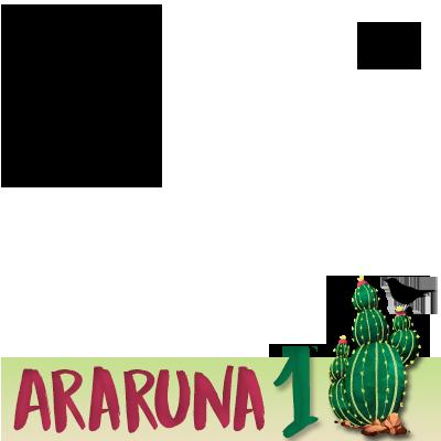 ARARUNA - CHAPA 1