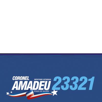 Coronel Amadeu