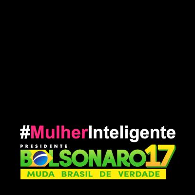 Bolsonarianas - Bolsonaro 17