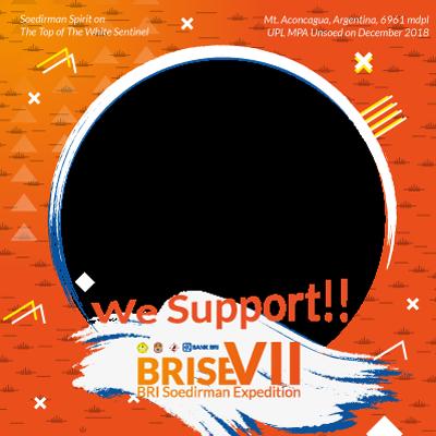 SUPPORT BRISE VII