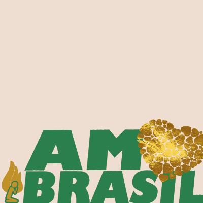 AMO BRASIL 2019