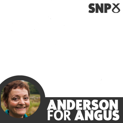 Anderson For Angus