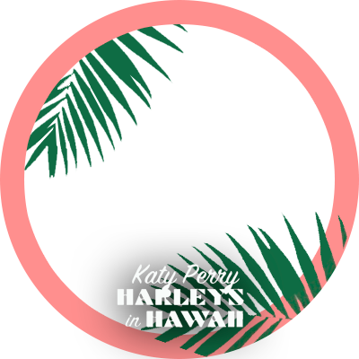Harleys in Hawaii