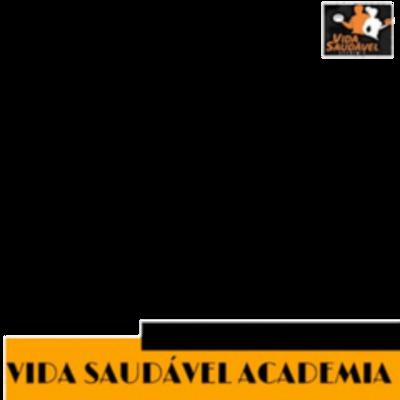 Vida Saudável Academia vrb
