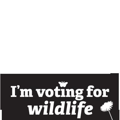 Vote for Wildlife