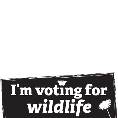 I'm voting for wildlife