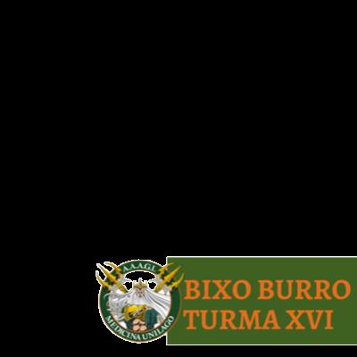 bixo burro TXVI