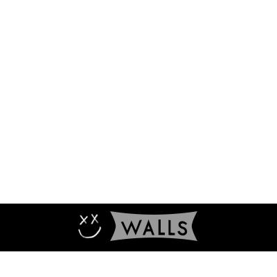 WALLS by Louis Tomlinson