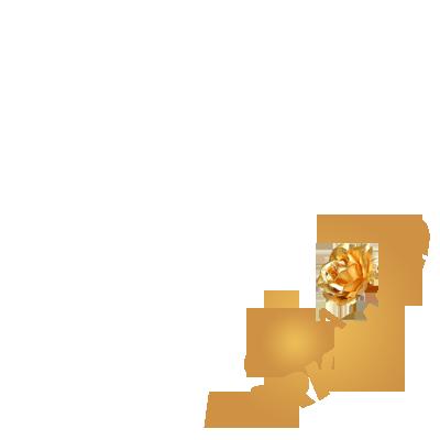 Casa DARK&WILD
