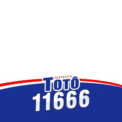 TOTÔ 11666