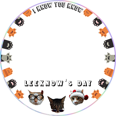 LeeKnow's Birthday