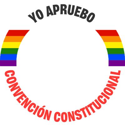 #YoAprueboCC - LGBT