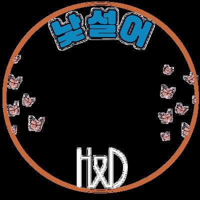 H&D DEBUT
