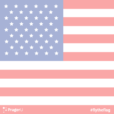 Fly the American Flag