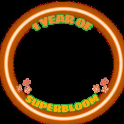1 YEAR OF SUPERBLOOM